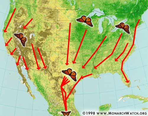 Monarch Watch's Fall Migration Map